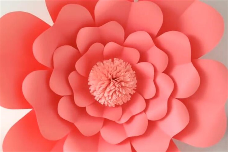 玩教具制作:教你制作超大花朵