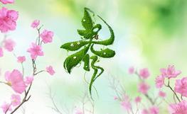 春之物语——幼儿园春天环境布置