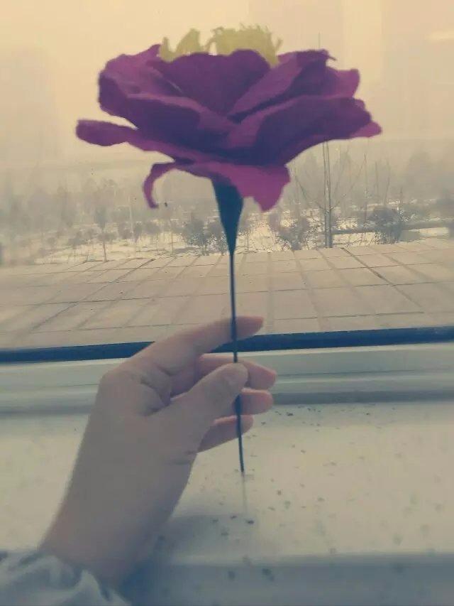 皱纹纸变身美丽的花儿