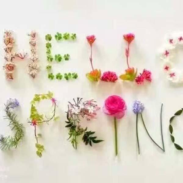 春天主题活动