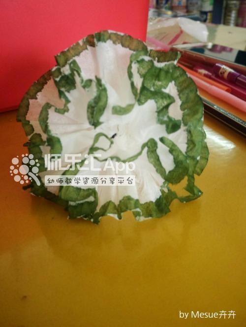 卫生纸康乃馨