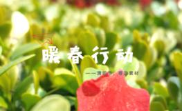 已结束【4月】暖春行动:清明、春游素材领取